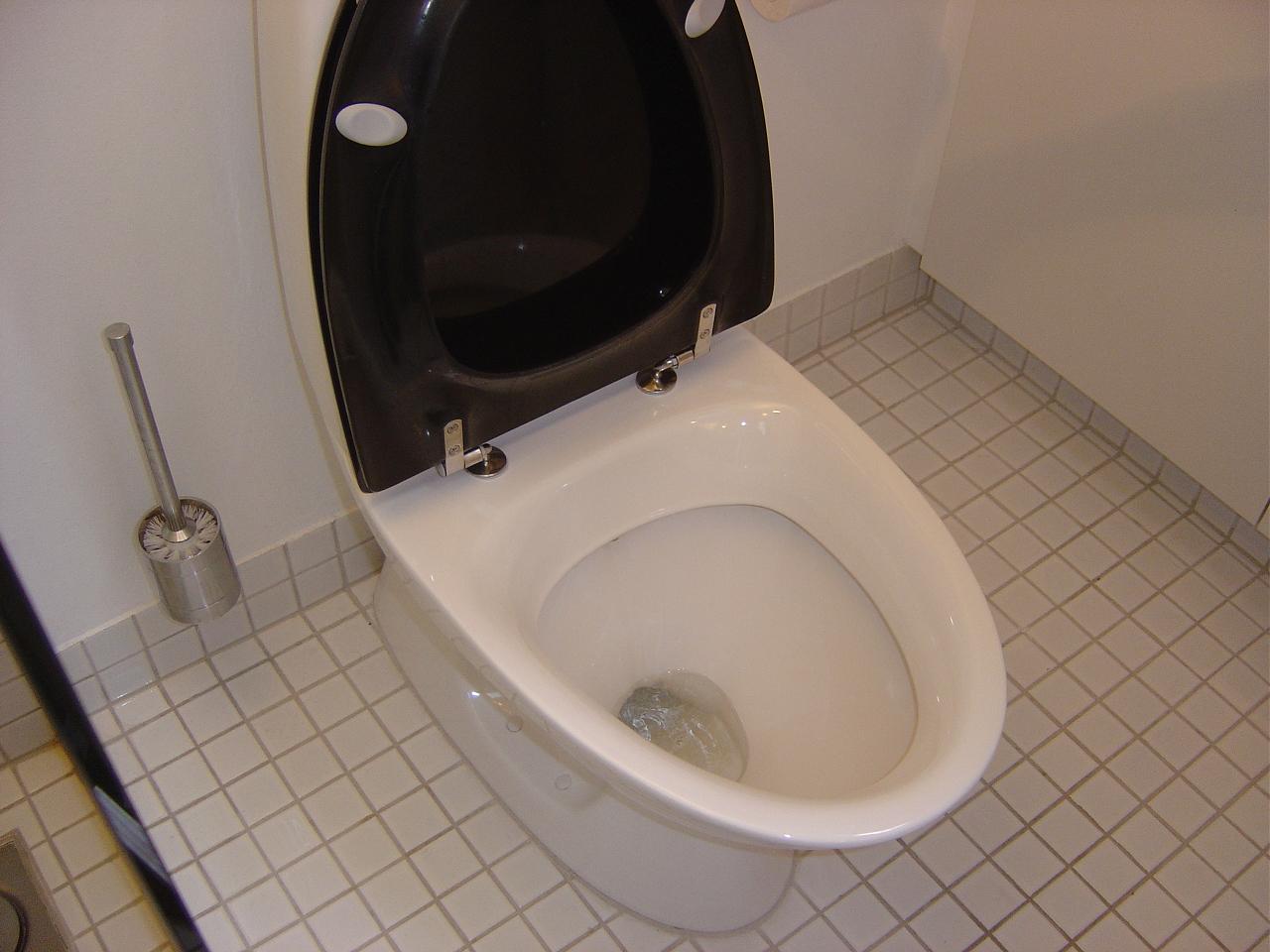 l ber toilettet wc der l ber kan repareres. Black Bedroom Furniture Sets. Home Design Ideas